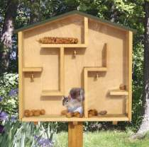 A-Mazing Squirrel House Plan