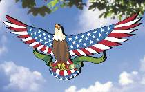 Star Spangled Eagle Plan by Sherwood Creations