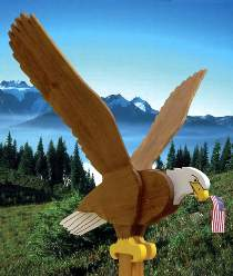 Flying Eagle Plan