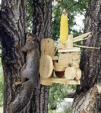 Tractor Squirrel Feeder Plan