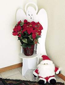 Angel Poinsettia Display Stand