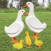 Duck Family Plan
