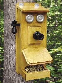 Telephone Bird Feeder Plan
