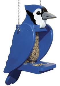 Blue Jay Pop Bottle Bird Feeder Plan